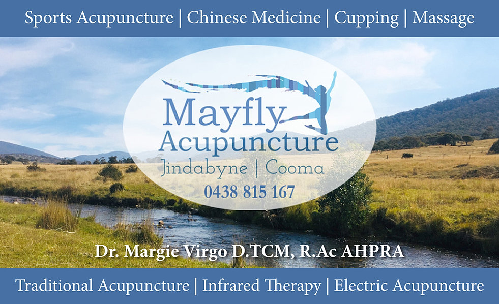Acupuncture Jindabyne  Mayfly Acupuncture