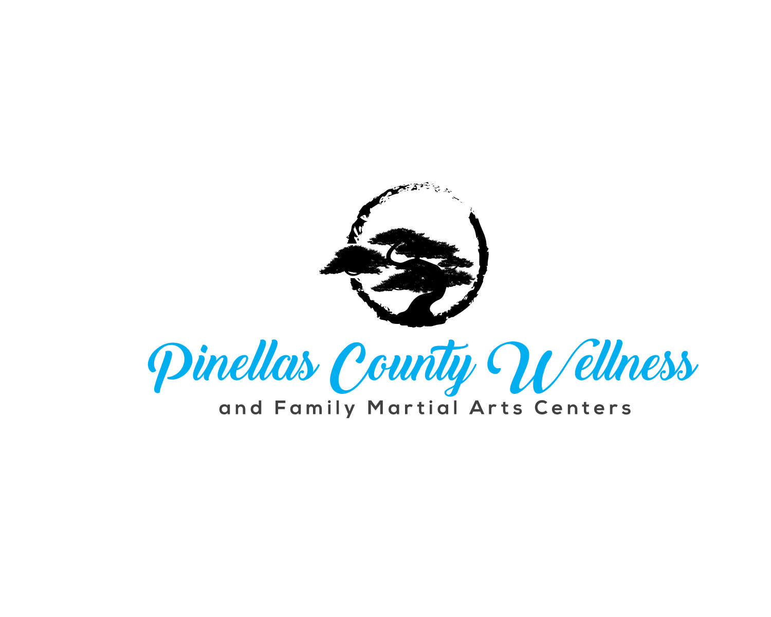 Aikido Martial Arts of Pinellas County in Clearwater, Florida