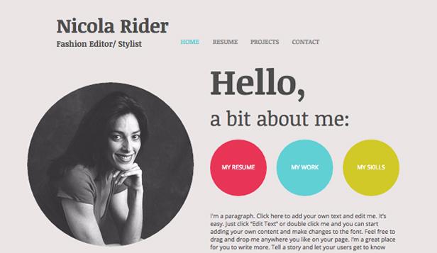 online resume website example