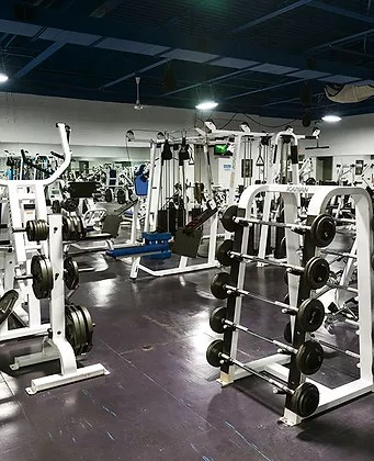 American Fitness San Jose : american, fitness, American, Fitness, Equipment, FitnessRetro