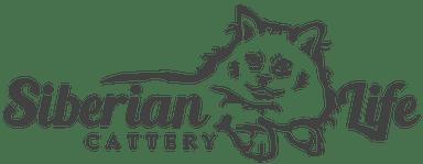SIBERIAN LIFE CATTERY. SIBERIAN CATS & KITTENS.FLORIDA
