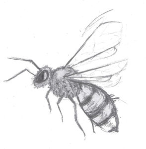 The Bees Book Review