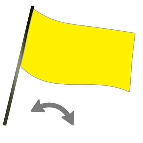 learn kart racing flags