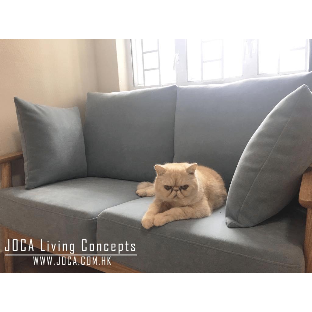 CAROX以色列貓抓布 | joca