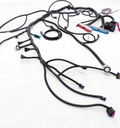97 04 ls1 w 4l60e 4l80e standalone wiring harness dbw  [ 5000 x 3750 Pixel ]