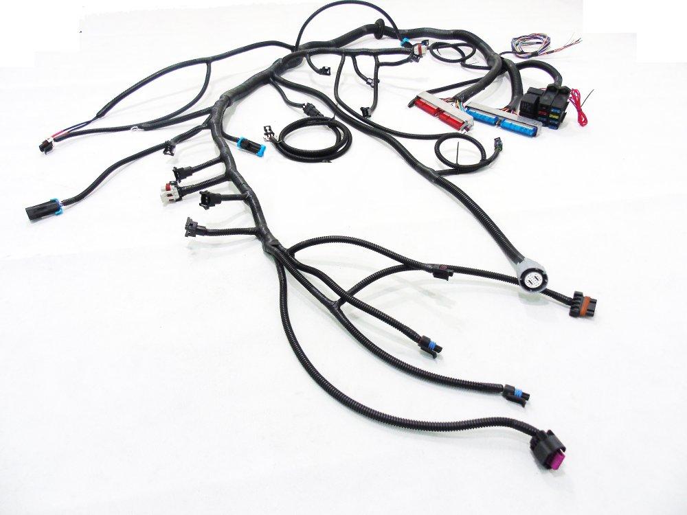 medium resolution of  97 04 ls1 w 4l60e 4l80e standalone wiring harness dbw