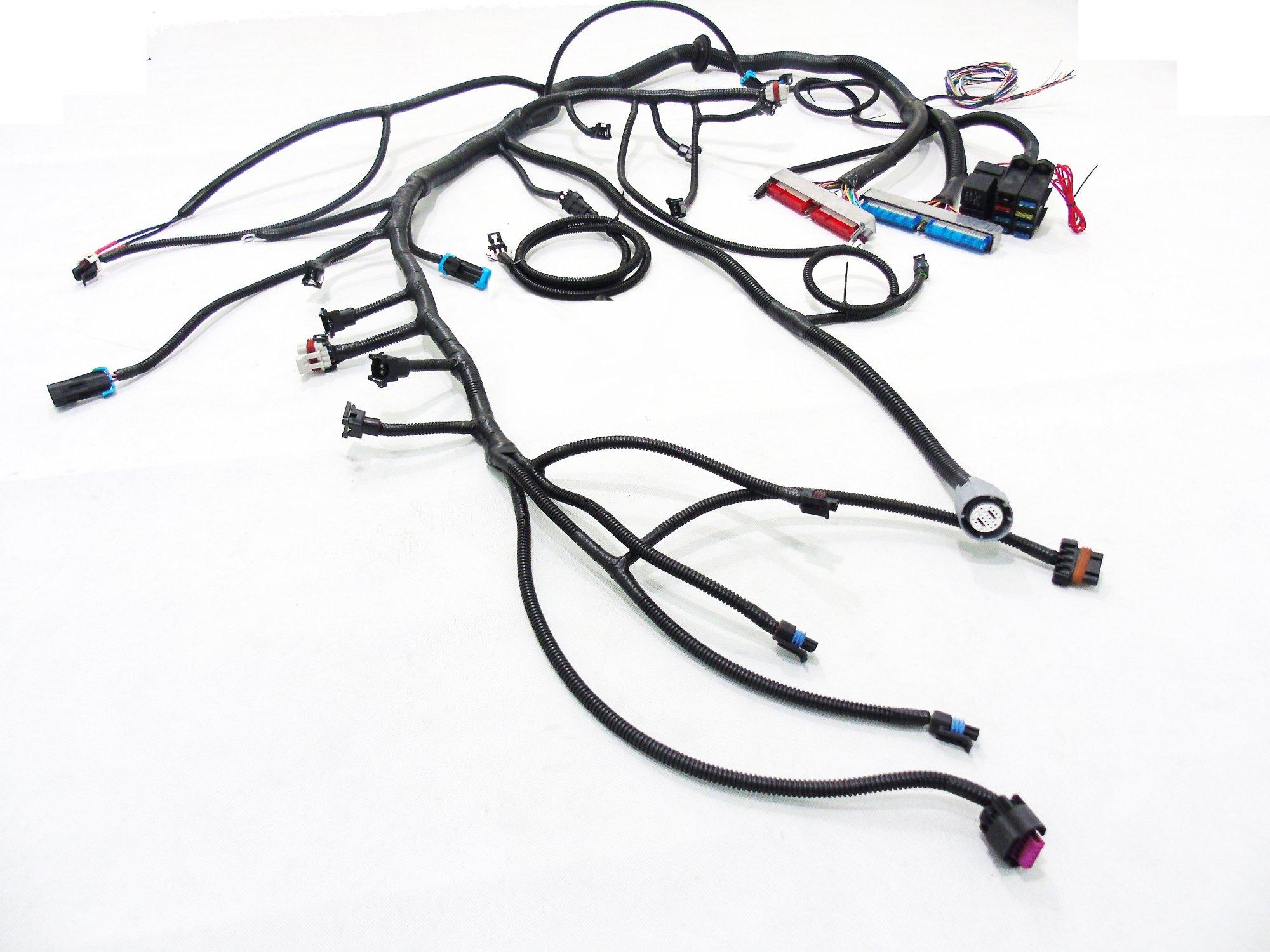 hight resolution of  97 04 ls1 w 4l60e 4l80e standalone wiring harness dbw