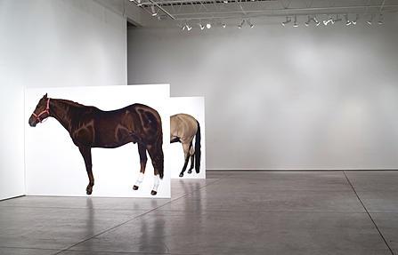 homage to Jannis Kounellis, Lara Nickel, life-size horse paintings