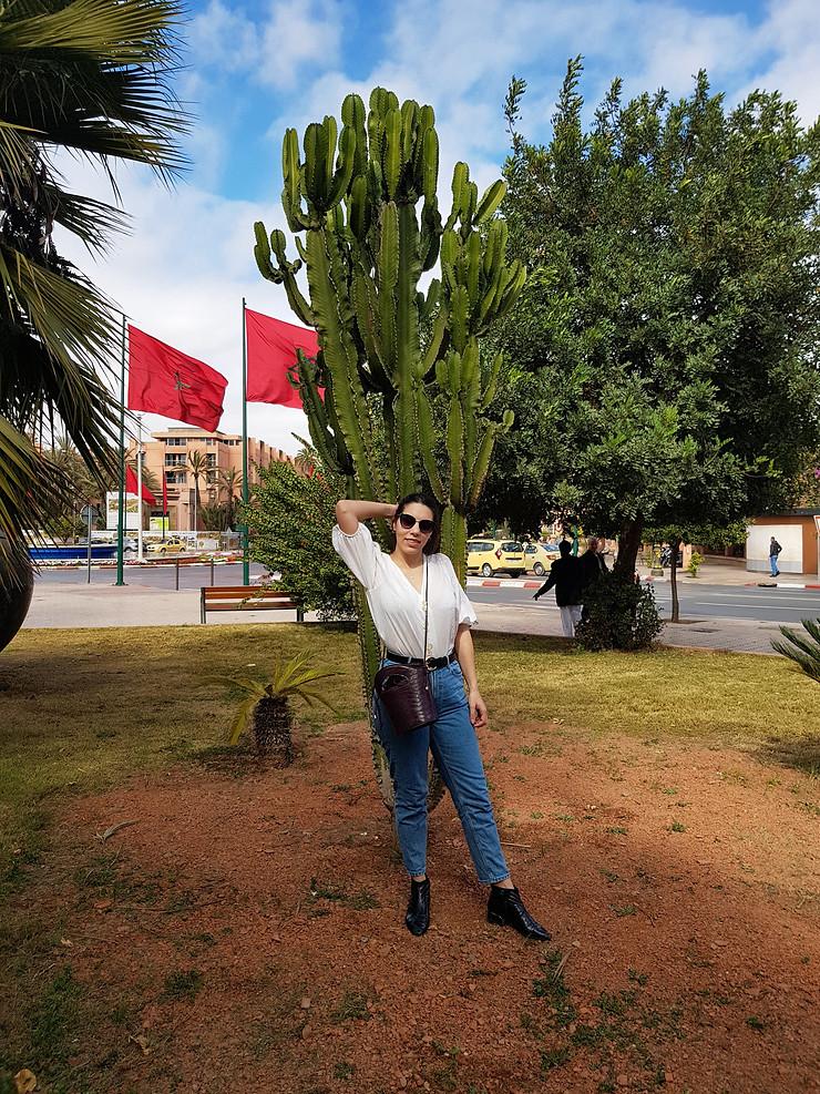mujer en marrakech, cactus, bandera de Marruecos, la ciudad roja