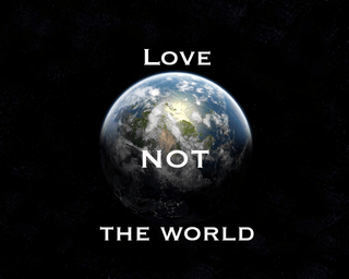 Image result for love not the world