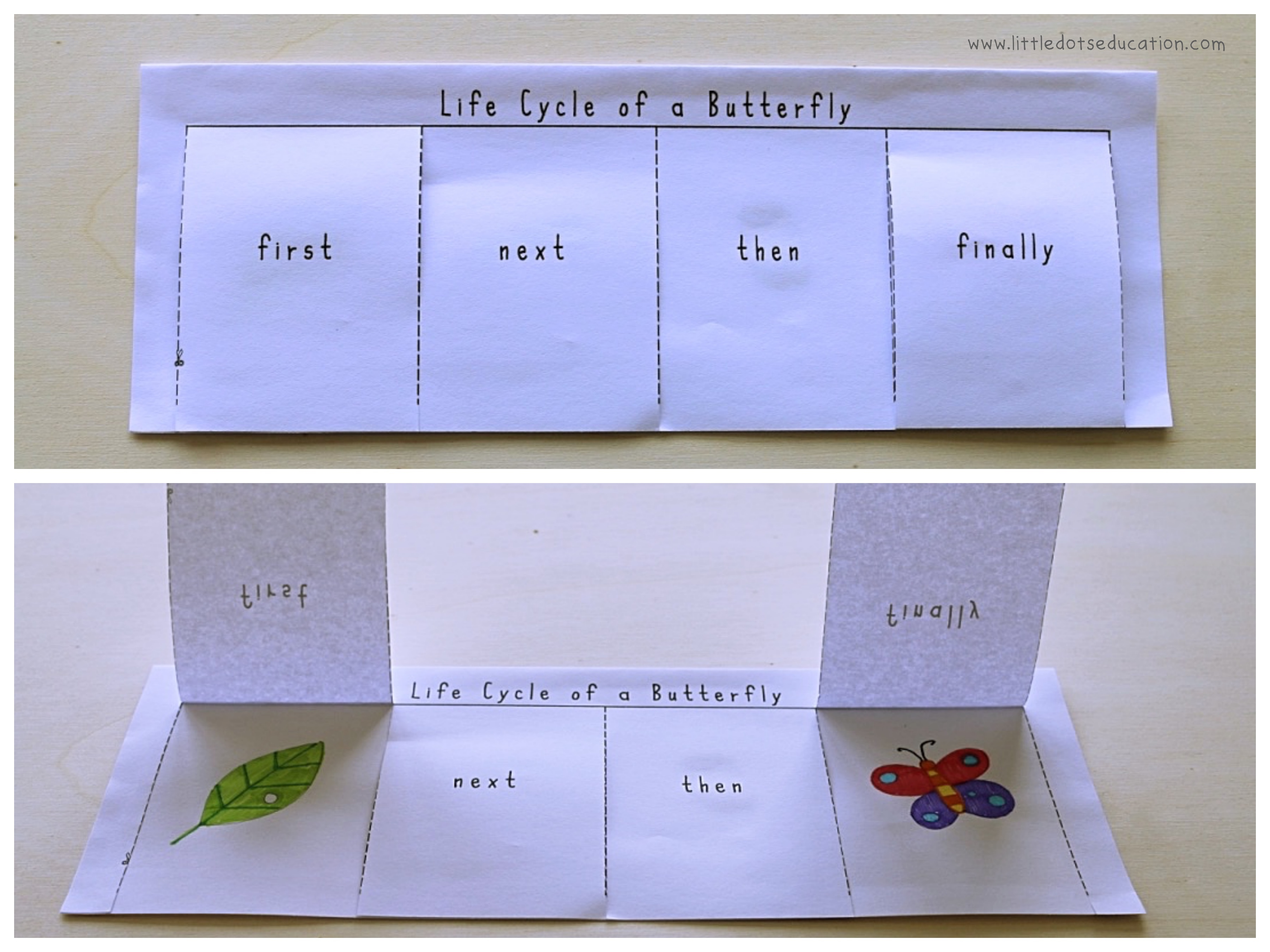 Free Life Cycle Of Butterfly Sequencing Printable