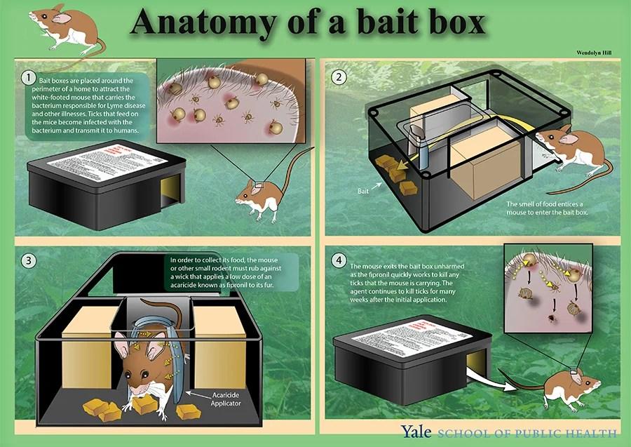 Tick Box Control Sytem Anatom