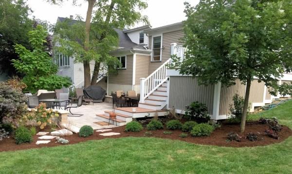 tulip tree landscaping backyard