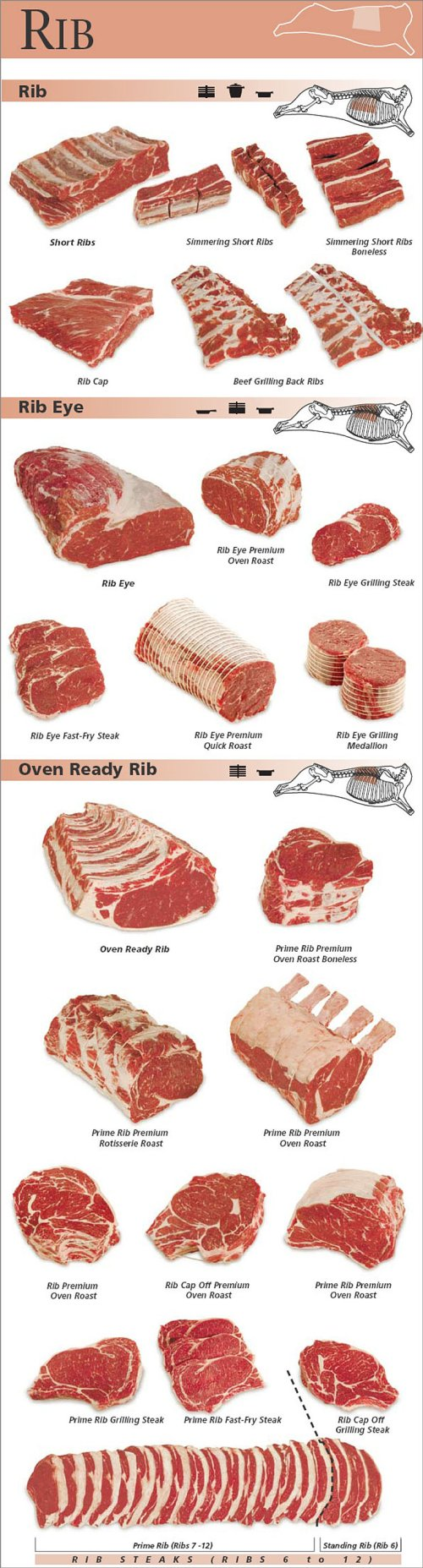 small resolution of beef rib cuts pork rib cut diagram pork loin diagram