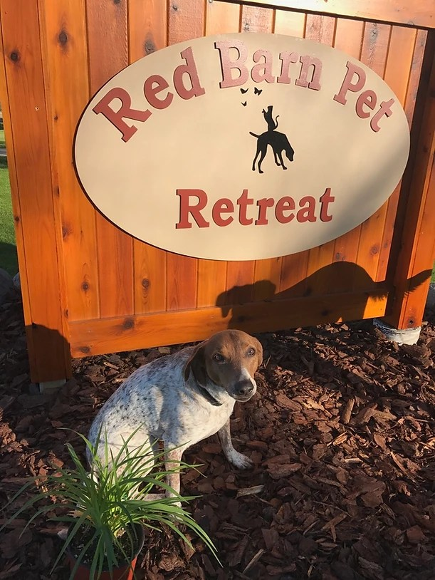 Pet Barn Near Me : About, United, States, Retreat