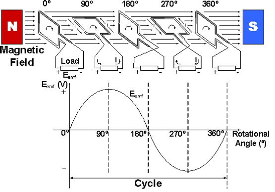Discuss the Principal of A.C Generator by labelled diagram.