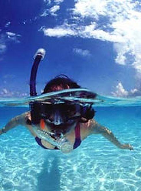 Snorkeling in Las Terrenas, Las Galeras, Samana