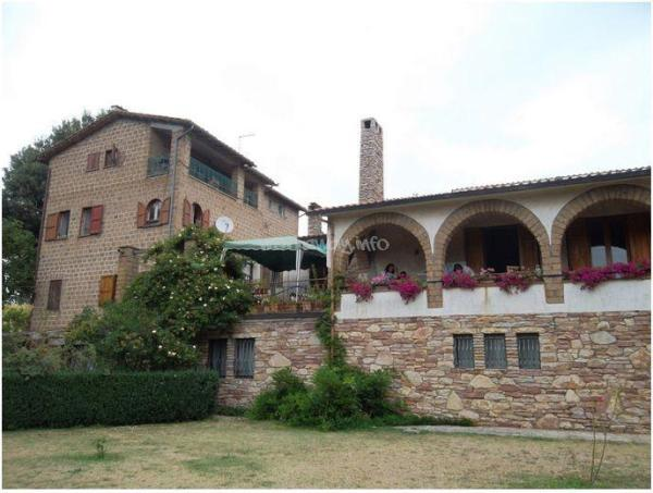 Stay with our family in Capranica and help with the garden