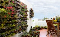 OwnGrown: Eco-friendly and sustainable urban gardens ...