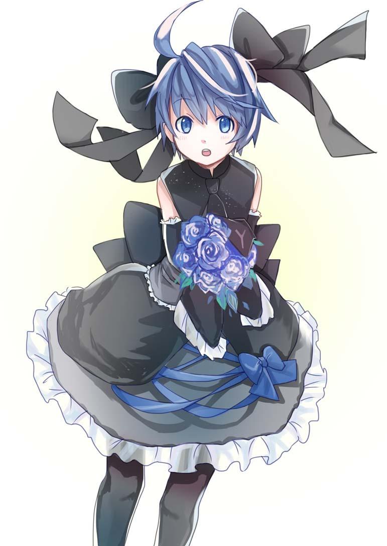 Anime Wallpaper Site Kaiko Vocaloid Mobile Wallpaper 1271839 Zerochan