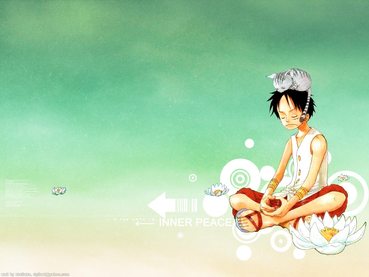monkey d luffy one piece wallpaper 45119