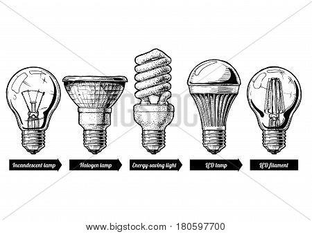 Vector hand drawn illustration of the light bulb evolution