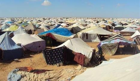 El derecho de autodeterminación del Sahara acapara el apoyo autonómico
