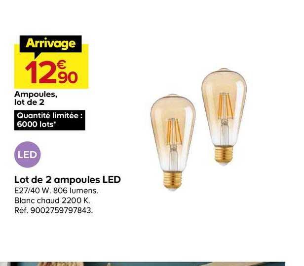 Offre Lot De 2 Ampoules Led Chez Castorama