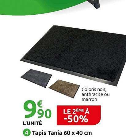 offre tapis tania 60 x 40 cm le 2eme a
