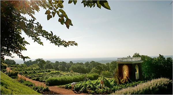 Jeffersons Vegetable Garden Still Grows at Monticello