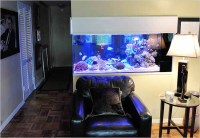 Home Aquariums as Decorating Elements - The New York Times