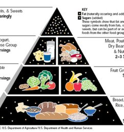 nutrition plate unveiled to replace the food pyramid the new york times [ 1024 x 877 Pixel ]