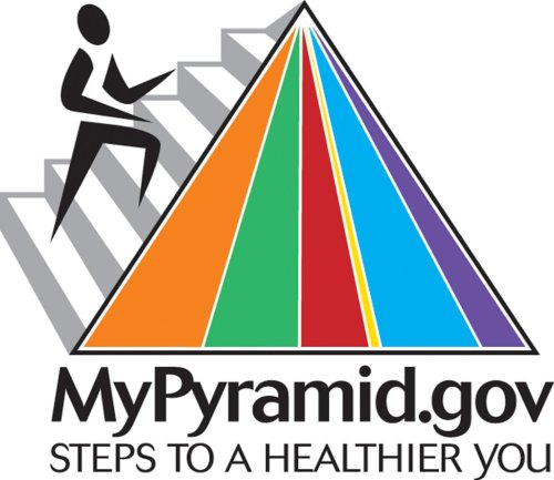 small resolution of the food pyramid was updated in 2005
