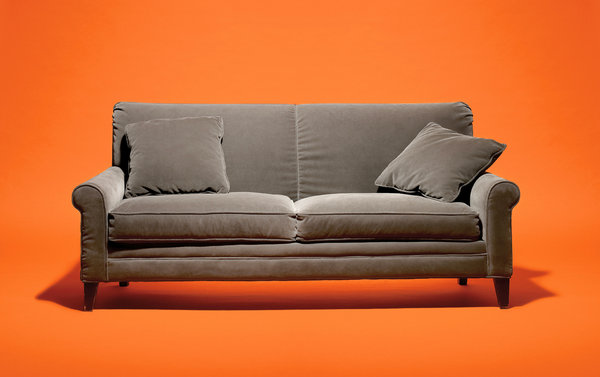 Arlene Blum's Crusade Against Toxic Couches The New York Times