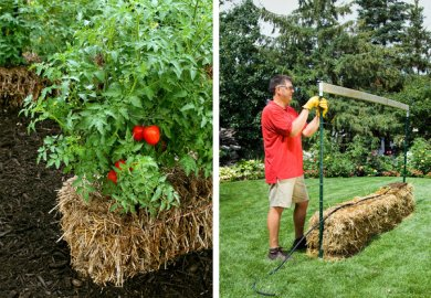 Growing A Straw Bale Garden Grow And Make
