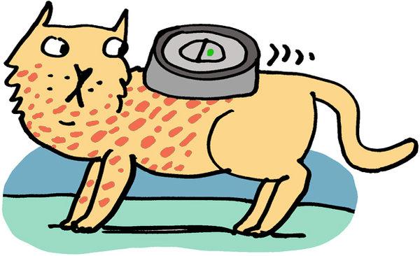 Roomba 980 Carpet Fringe Www Stkittsvilla Com