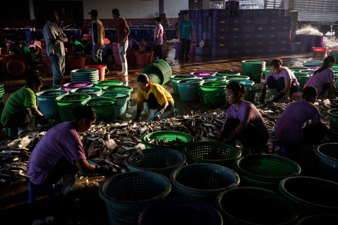 Most of Thailand's seafood workers are migrants who are brought into Thailand illegally by traffickers. Credit Adam Dean for The New York Times