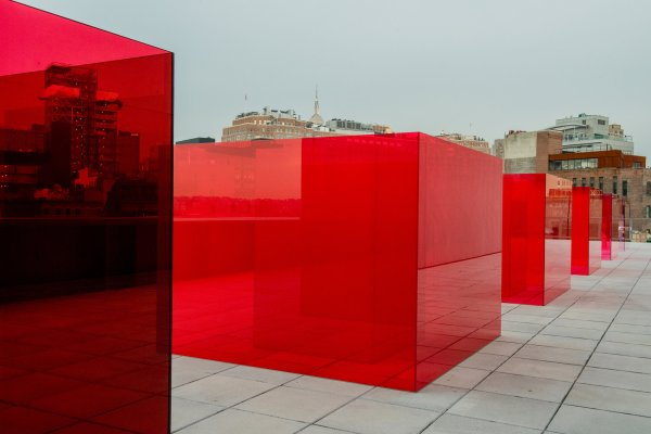 User Guide Whitney Biennial - York Times