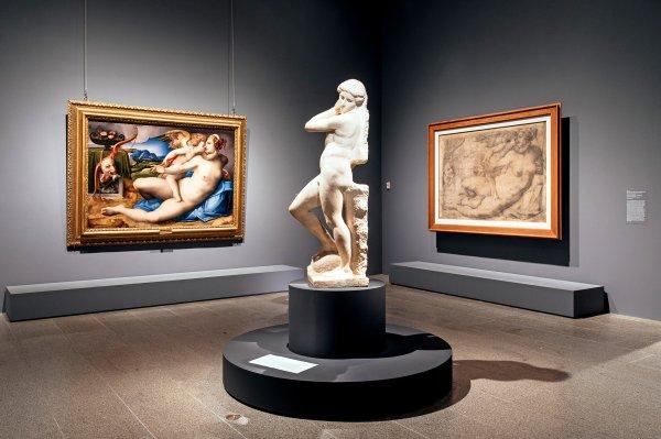 Michelangelo Divine Star Of - Show