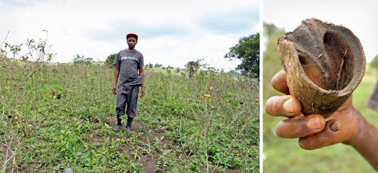 住在内罗毕郊区的莫里斯·恩杰鲁去年失去了八头驴和维持生计的工作。那些驴只剩下一只驴蹄,被他留作纪念。