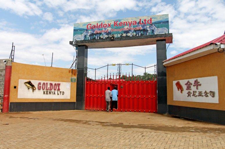 肯尼亚的金牛屠宰场。虽然驴只交易的禁令减缓了这个行业在一些国家的发展速度,但在没有禁令的肯尼亚,对阿胶的需求没有减少的迹象。