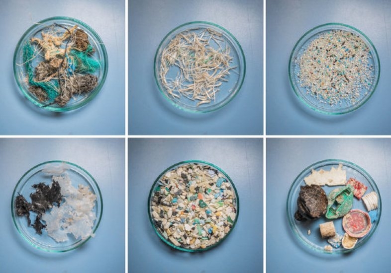 As part of the study, researchers sorted plastic by size to begin to understand how the material breaks down at sea.