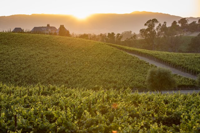 best places to visit in Napa valley
