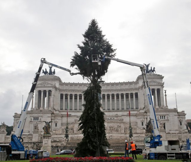 Image Cranes This Week Helped Romes New Christmas Tree Get Ready For