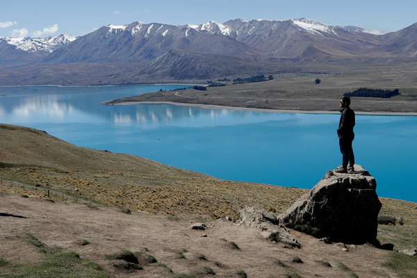 A Tourist Family S Bad Behavior Has New Zealand Rethinking