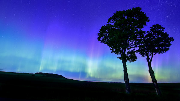 northern lights in the