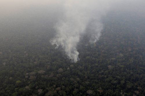 small resolution of Amazon Rainforest Fires: Here's What's Really Happening - The New York Times