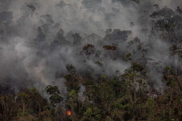 Burning forest this week near Porto Velho, Brazil.
