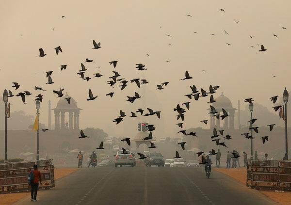 Health Emergency Declared In India's Capital Delhi