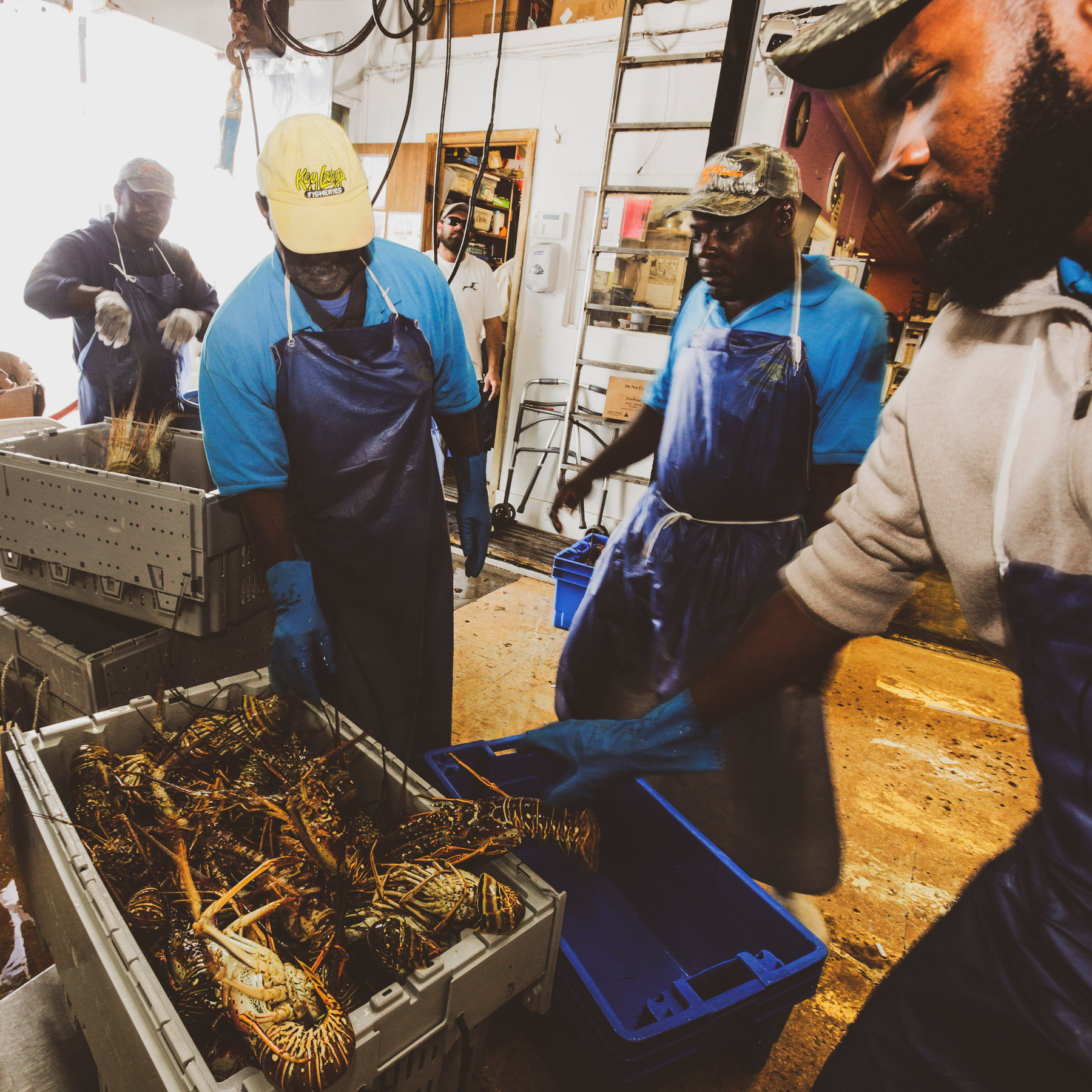 Florida Lobster Got a Break on China Tariffs. Then Came ...